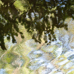 Water – Surface and Reflections