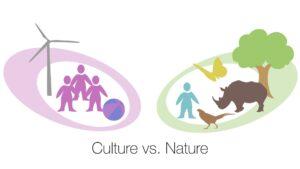 Culture vs. Nature